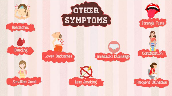 other symptoms of pregnancy
