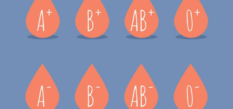 What are the types of blood?