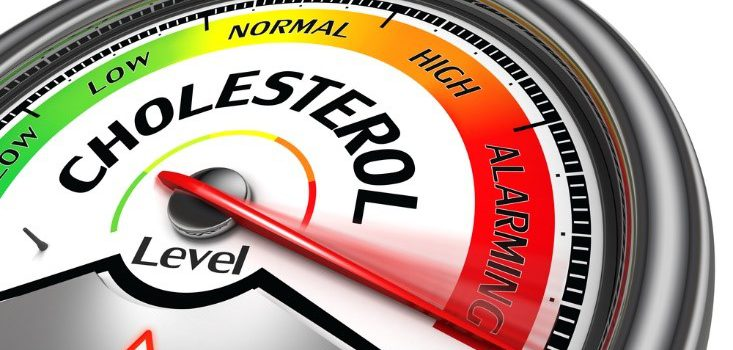 What can raise your cholesterol?
