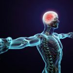 Smart Ways to Keep Your Central Nervous System Healthy