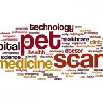 Importance of PET SCAN