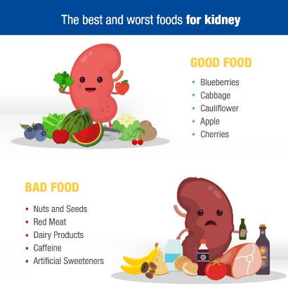 food foods kidneys drinks kidney healthy health keep help infection maintain
