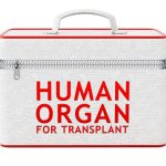 Everything You Need To Know About Organ Donation In India