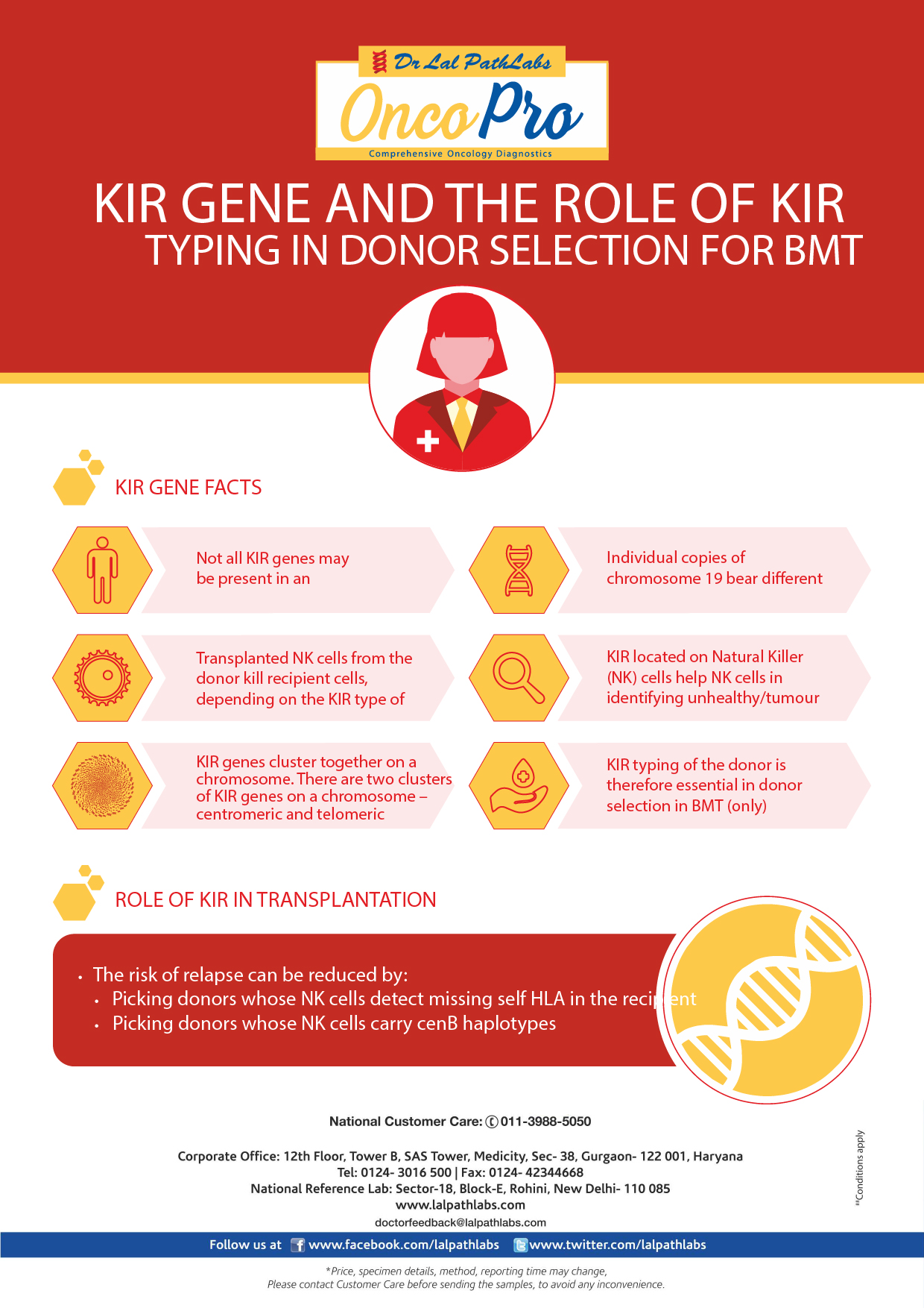 KIR Gene and the Role of KIR Typing in Donor Selection for BMT