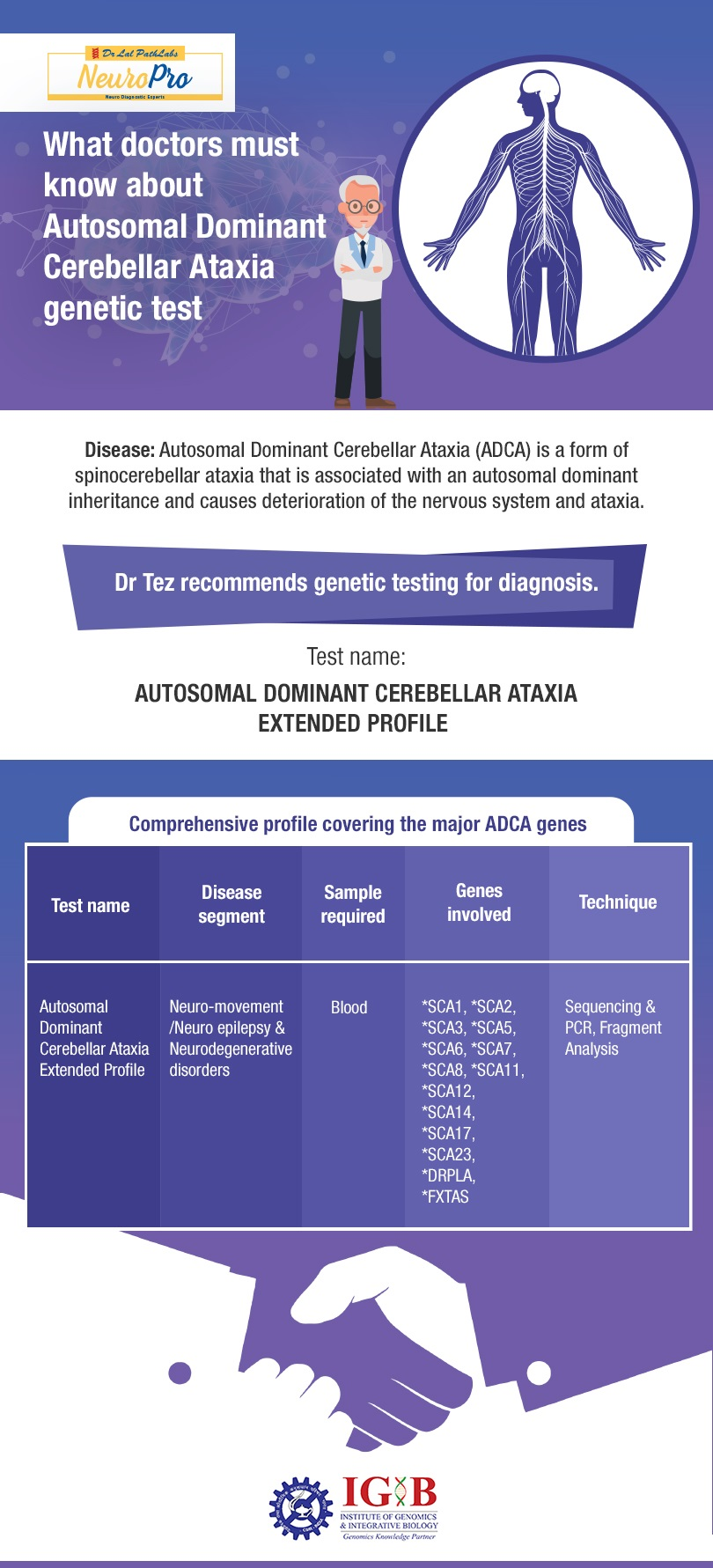 What Doctors Must Know About Autosomal Dominant Cerebellar Ataxia Genetic Test