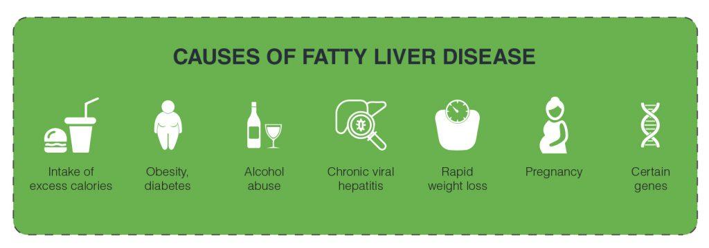 causes of fatty liver