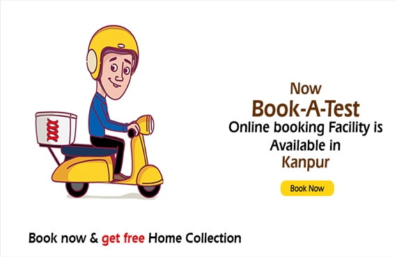 Free Home Collection in Kanpur